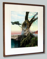 Fine Art prints to buy online