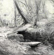 Wilkswood sketch