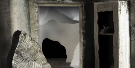 Ammonite Chamber